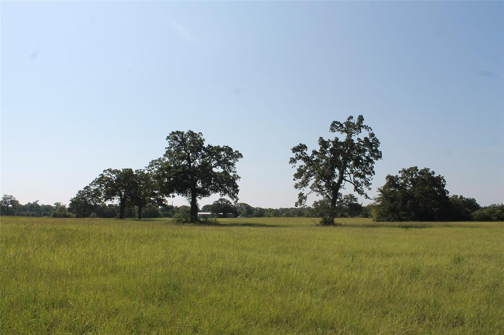 8297 County Road 103, Iola, TX 77861 - Iola, TX real estate listing