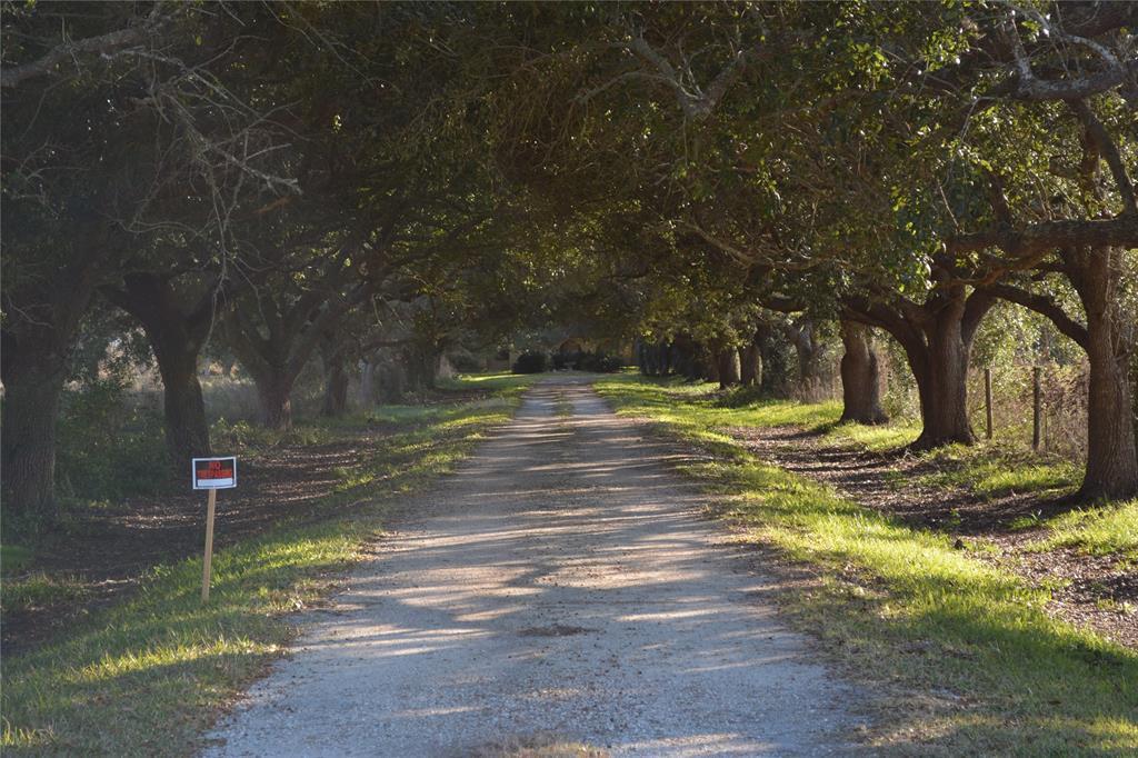 3226 FM 2936, Anahuac, TX 77514 - Anahuac, TX real estate listing