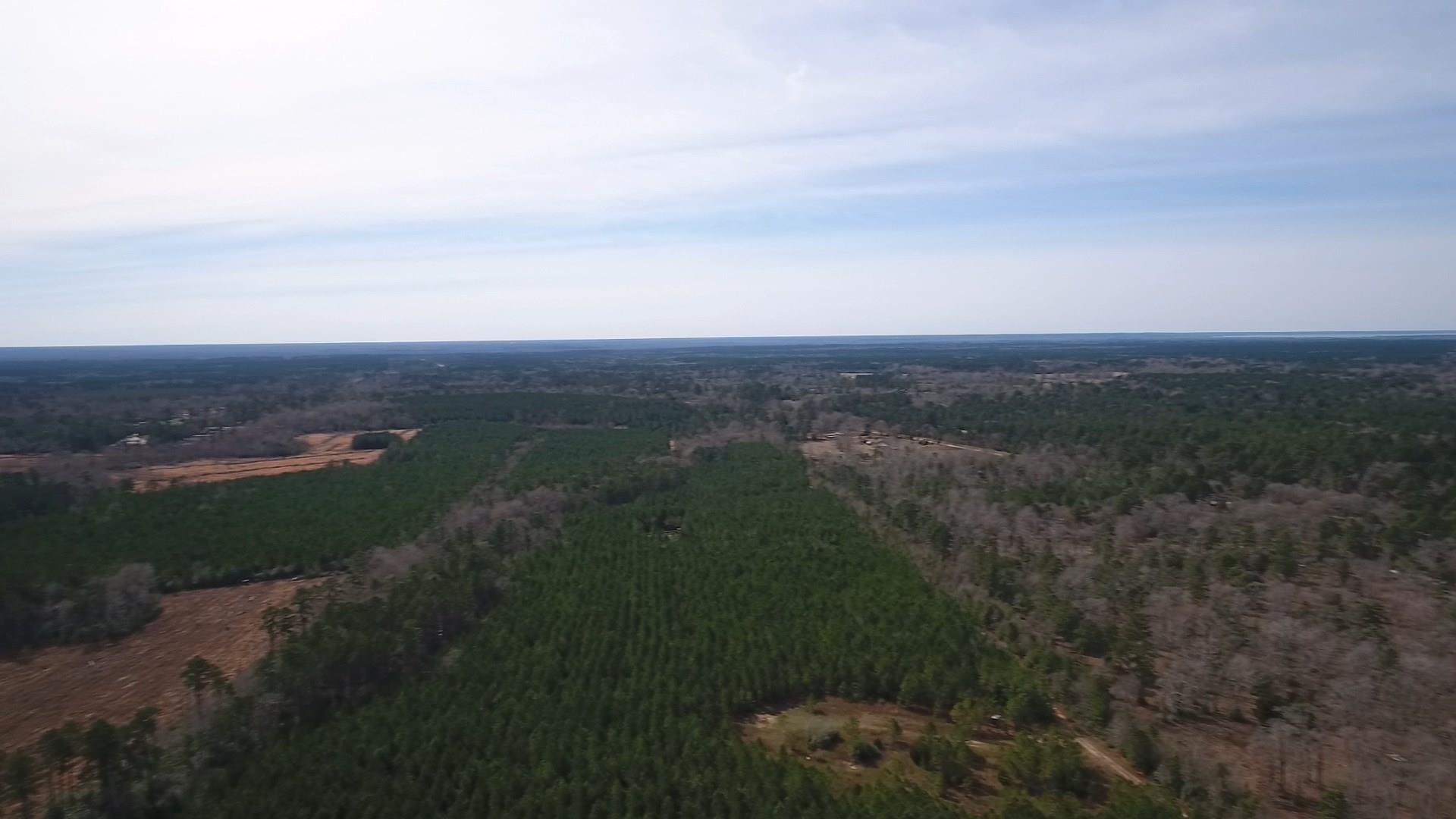 TBD Bird Road Property Photo - Goodrich, TX real estate listing