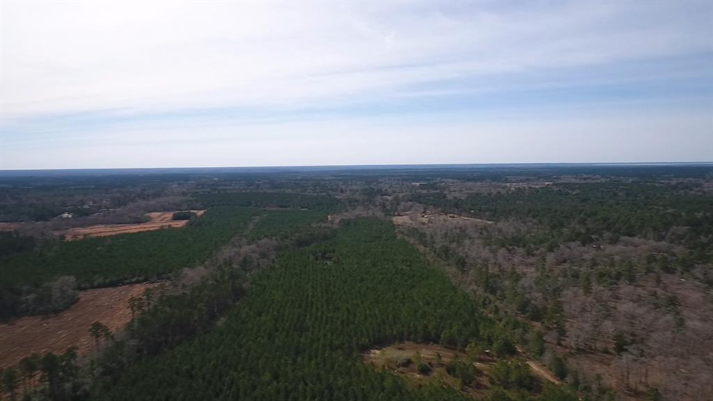 TBD Bird Road Property Photo - Goodrich, TX real estate listing