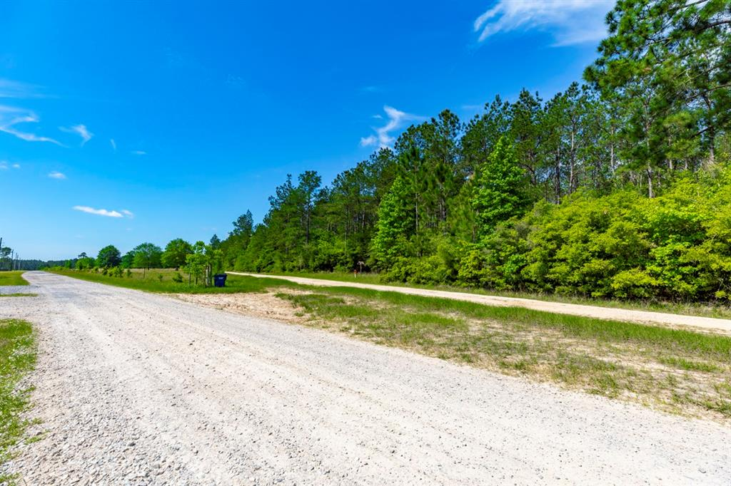 Tract 1 Whispering Pines Drive Property Photo - Lumberton, TX real estate listing
