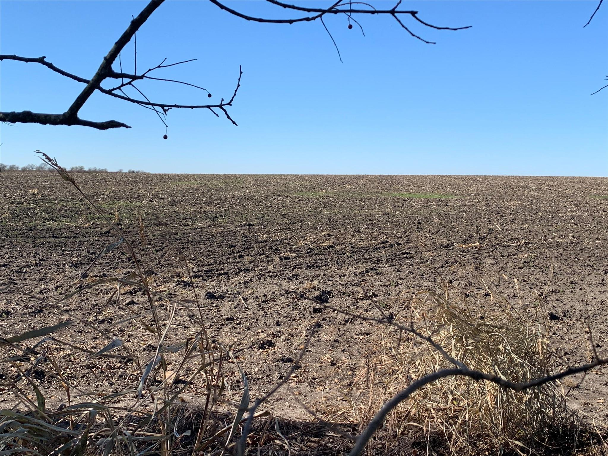 Lot 1 LCR 158 Property Photo - Coolidge, TX real estate listing