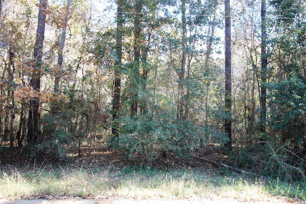 TBD S Layl Drive Street Property Photo - Liberty, TX real estate listing