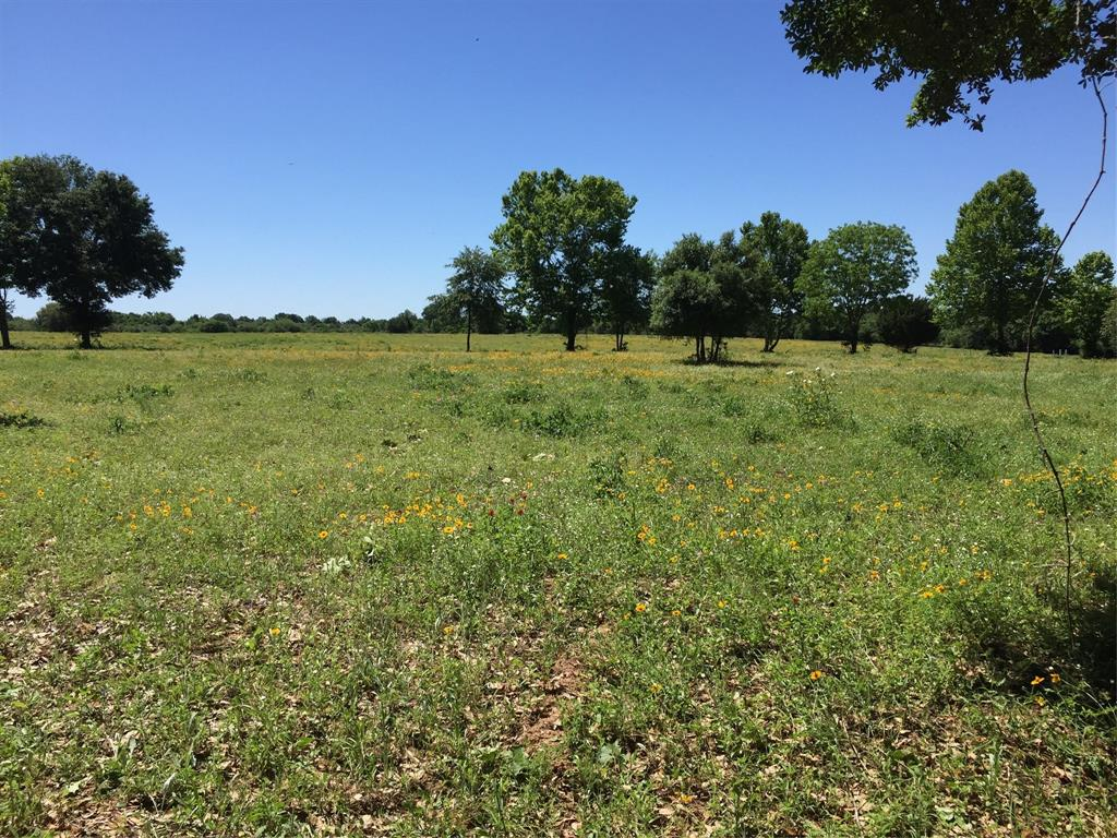 5482 FM 359 Property Photo - Pattison, TX real estate listing