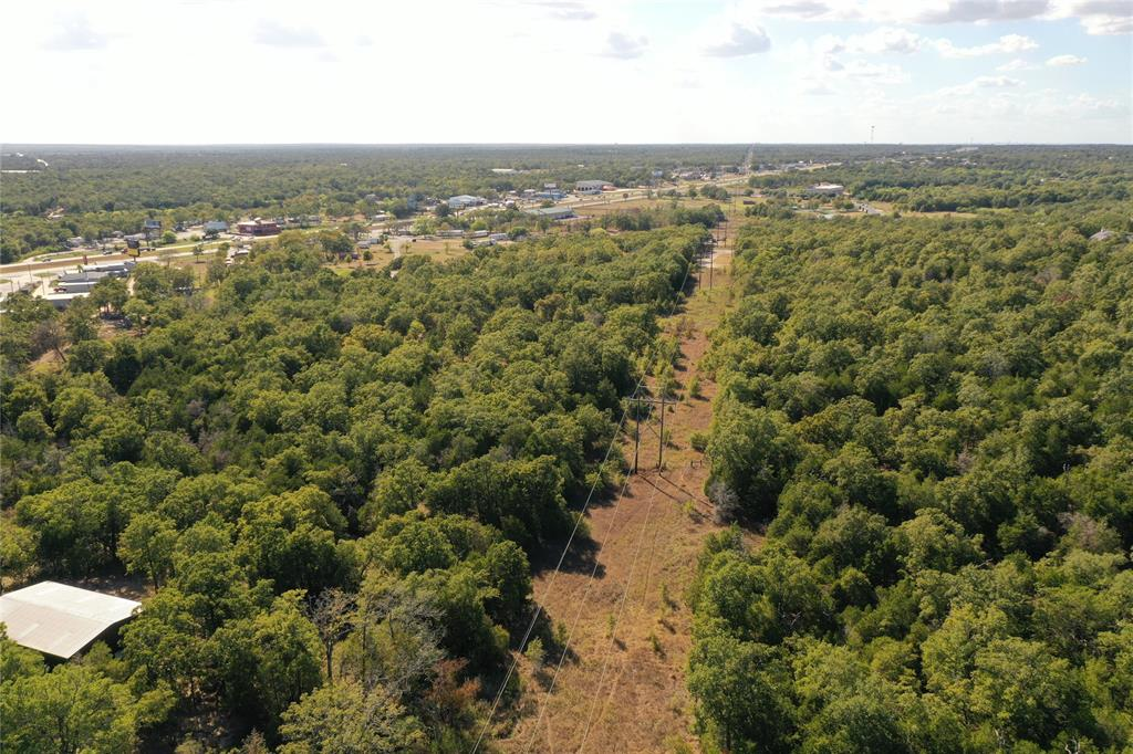 TBD Lumberjack Court Property Photo - Bastrop, TX real estate listing