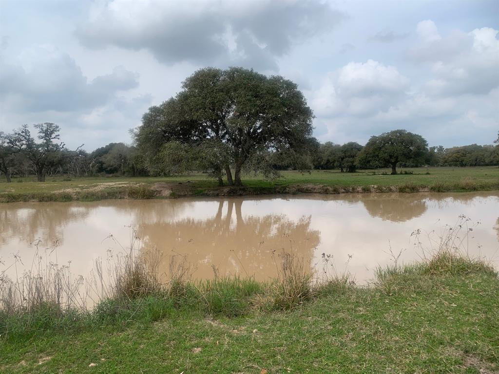 1288 Forest Oaks Drive Property Photo - Altair, TX real estate listing