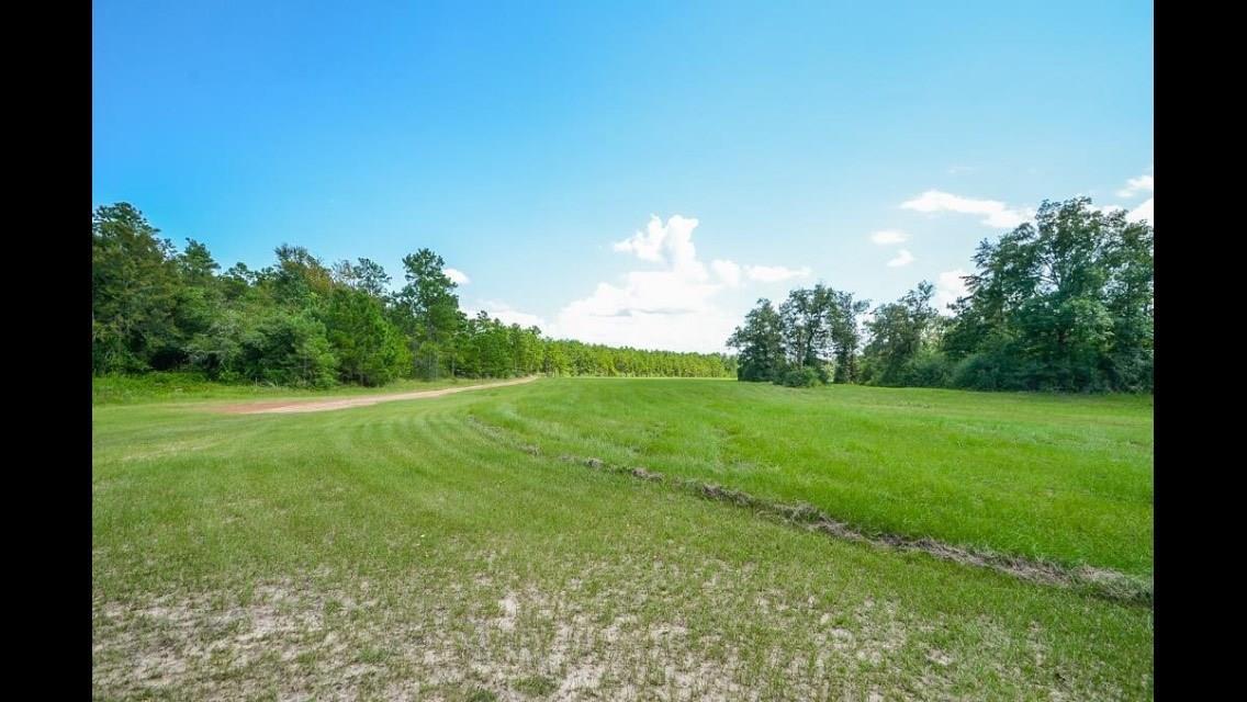 16185 E Williams Road Property Photo - Conroe, TX real estate listing