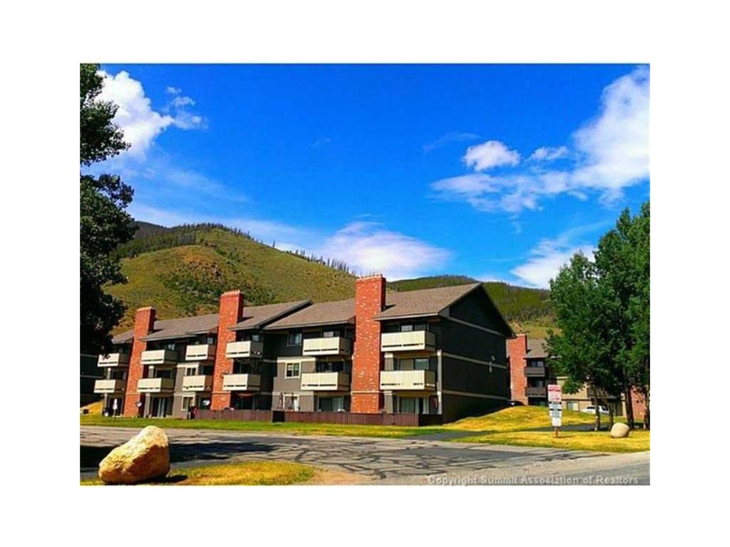 1003 Straight Creek Drive Property Photo - Other, CO real estate listing