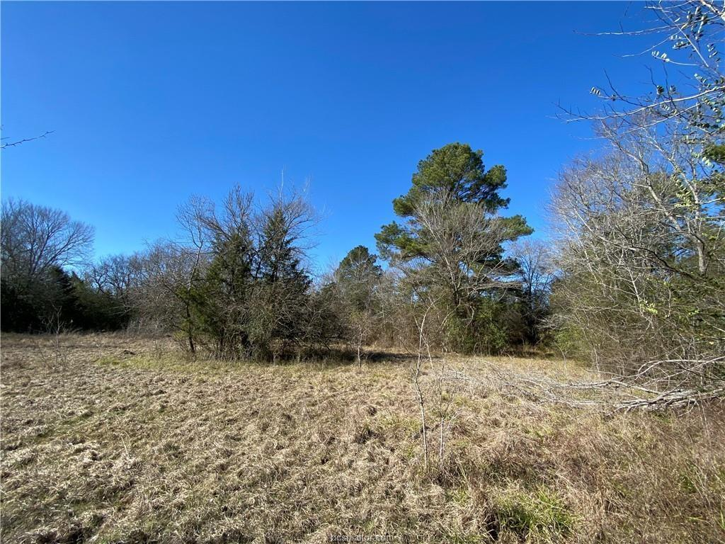 TBD County Road Property Photo - Richards, TX real estate listing