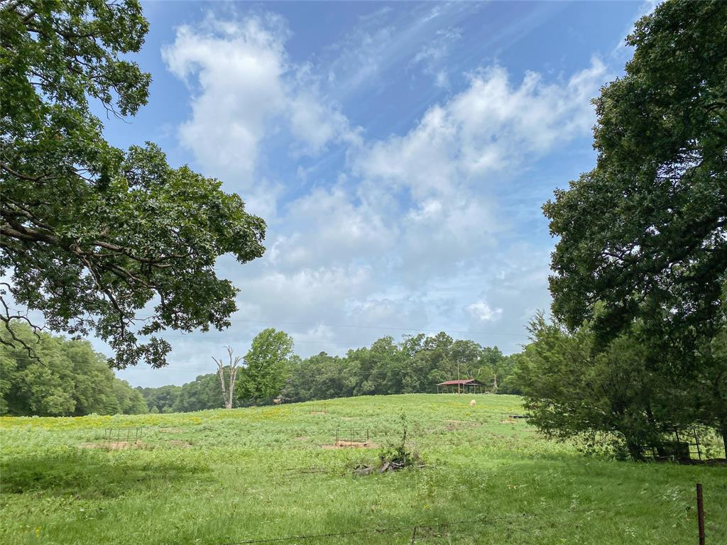 00 CR 3906 Property Photo - Jacksonville, TX real estate listing