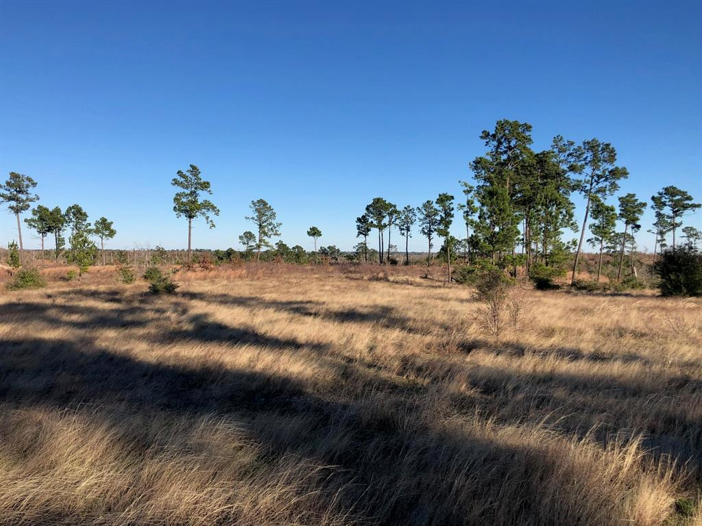0 McAllister Road Property Photo - Bastrop, TX real estate listing