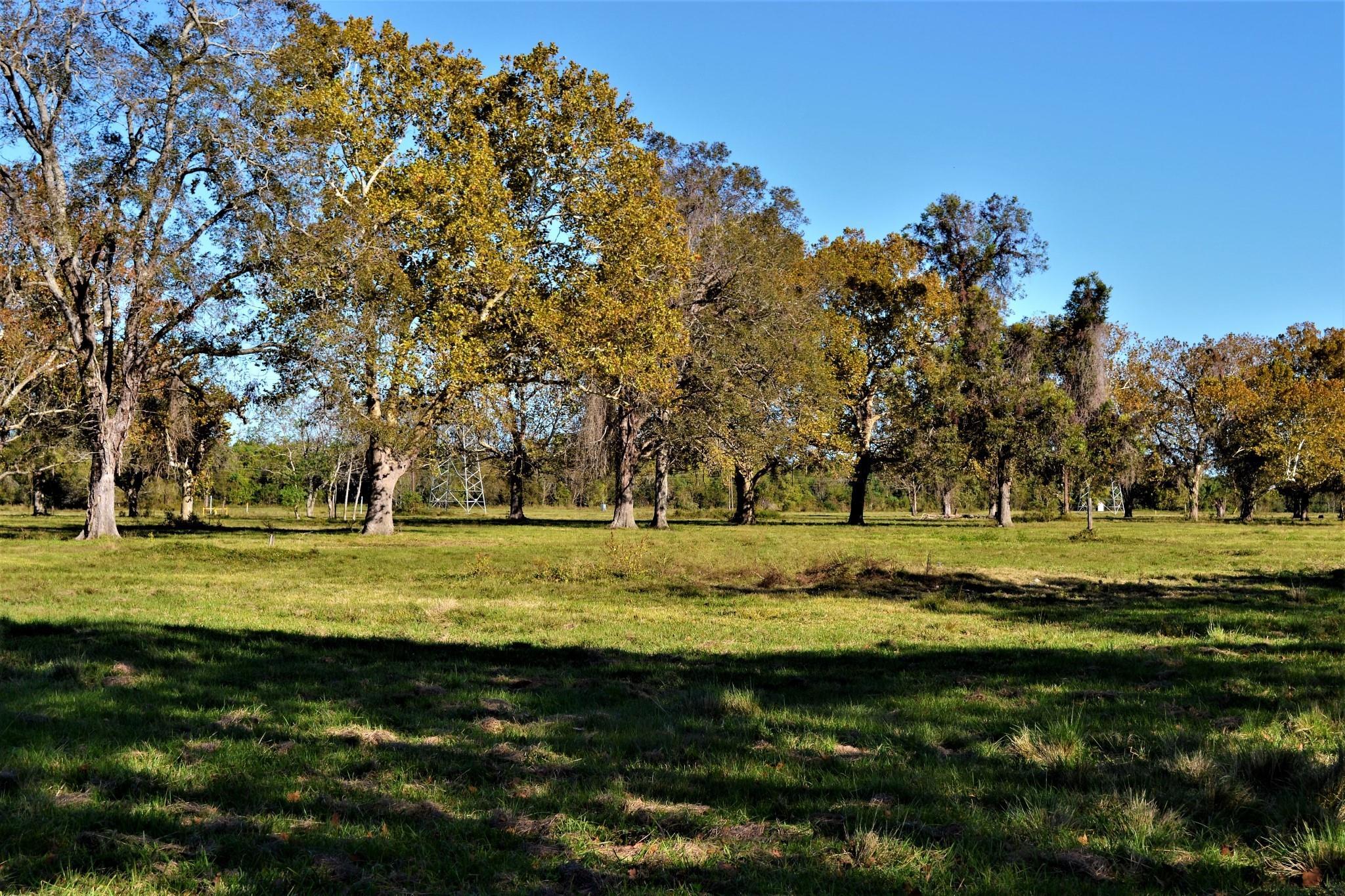 0 Texasgulf Avenue Property Photo
