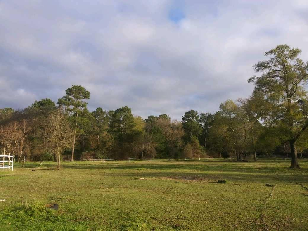 11823 County Road 302 Property Photo - Plantersville, TX real estate listing