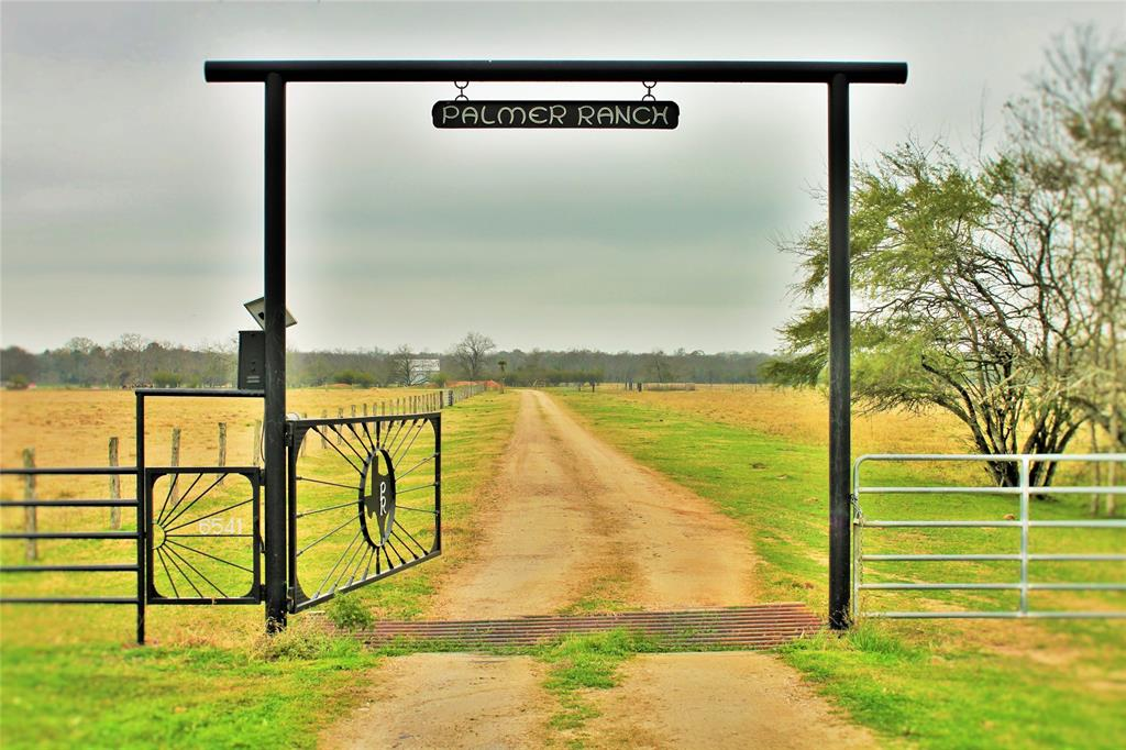 6541 Eagle Nest Acres Drive Property Photo - Wallis, TX real estate listing