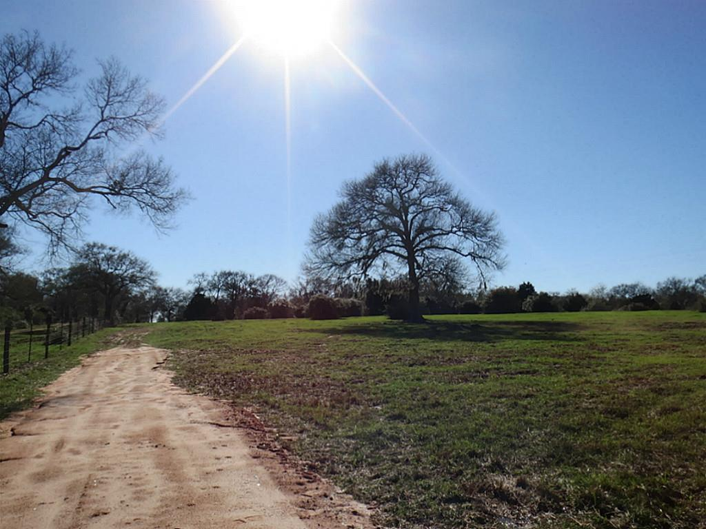 000 FM 2187, Sealy, TX 77474 - Sealy, TX real estate listing