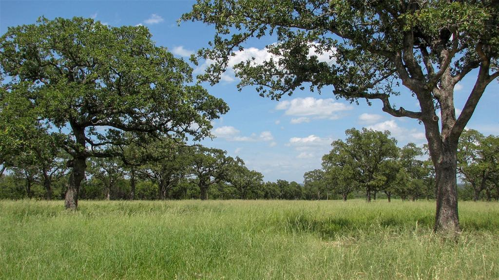 01 Grimes Road, Mineral Wells, TX 76067 - Mineral Wells, TX real estate listing