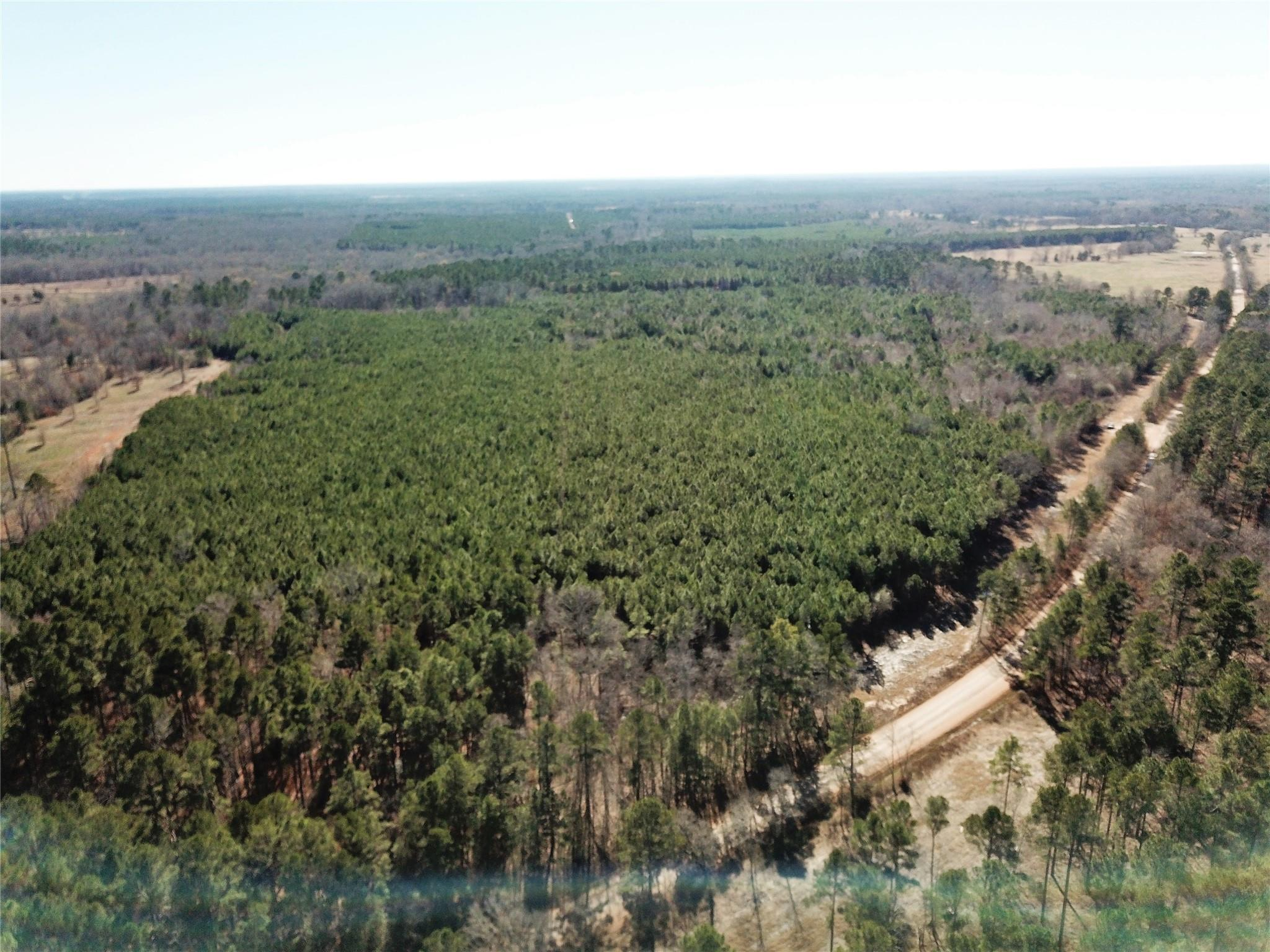 TBD West Road Property Photo - Carthage, TX real estate listing