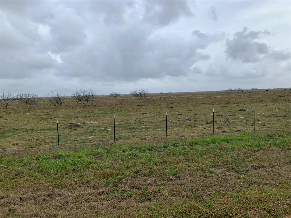 00 00 Property Photo - Vanderbilt, TX real estate listing