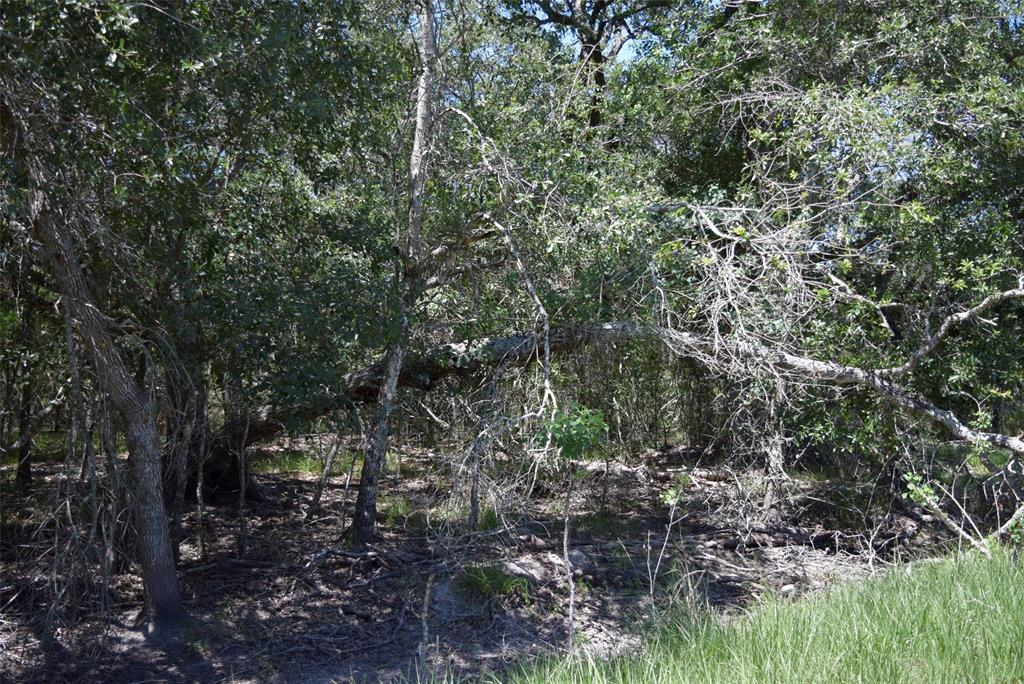 0 Paloma Property Photo - Clemville, TX real estate listing