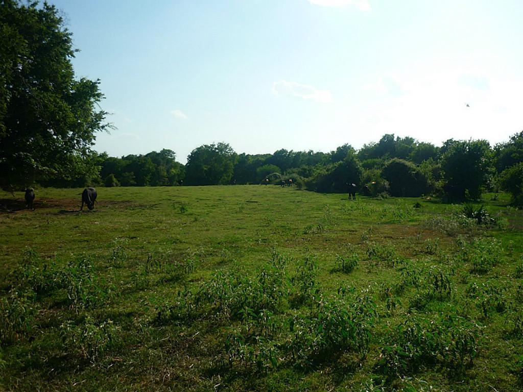0 Hilltop Road Property Photo - Kendleton, TX real estate listing