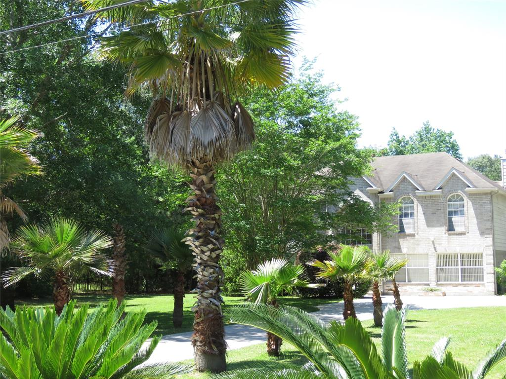 23957 Majestic Forest Drive Property Photo - New Caney, TX real estate listing
