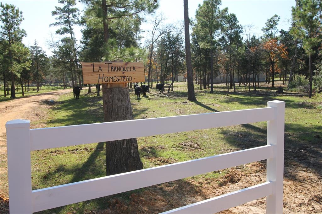 363 Furr Mays B Road Property Photo - Smithville, TX real estate listing