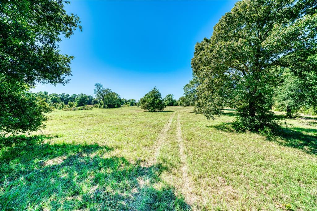 TBD FM 247 AMERICAN LEGION Drive Property Photo - Huntsville, TX real estate listing