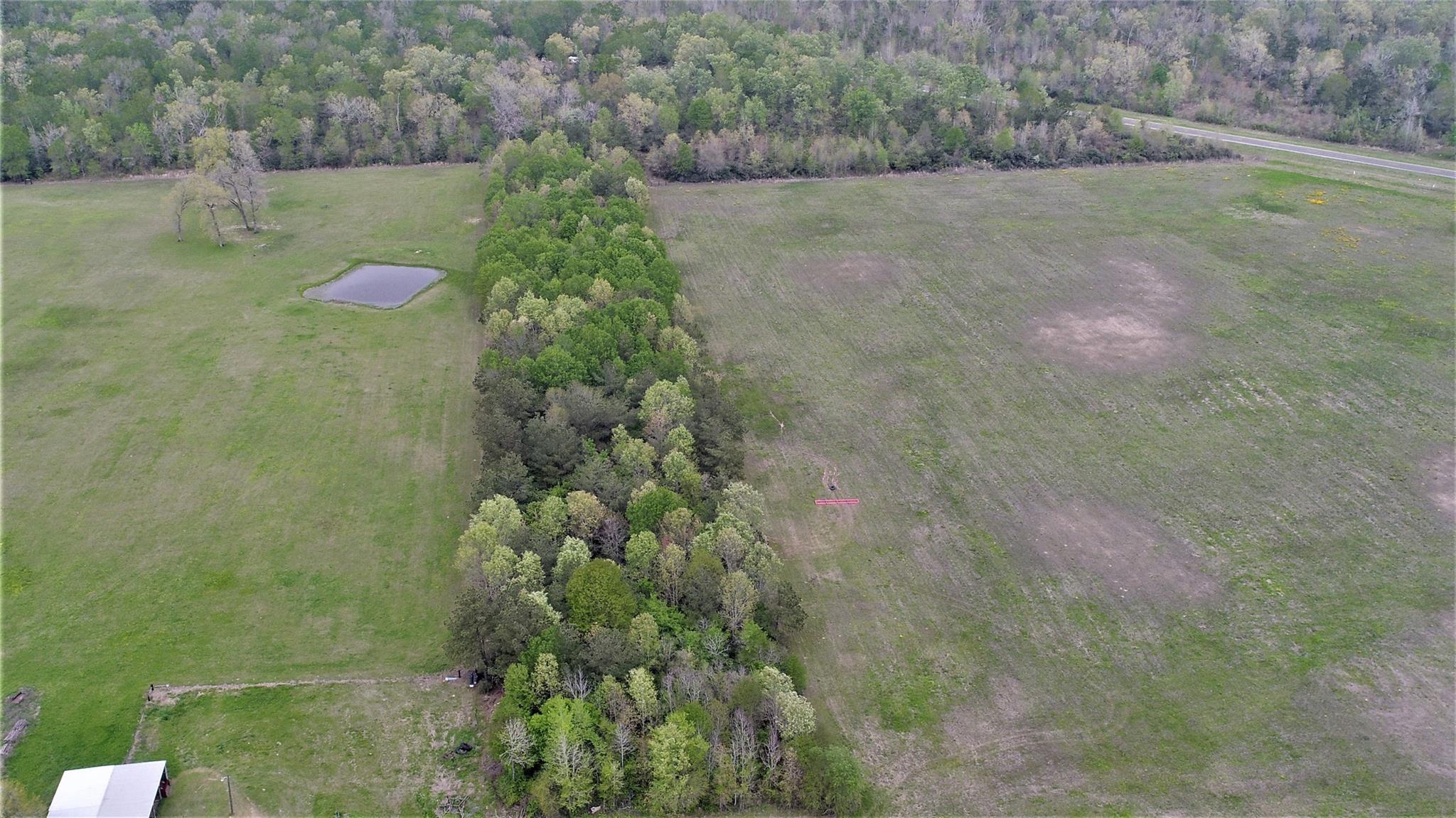 TBD Henry Pegoda Road Property Photo - Pennington, TX real estate listing