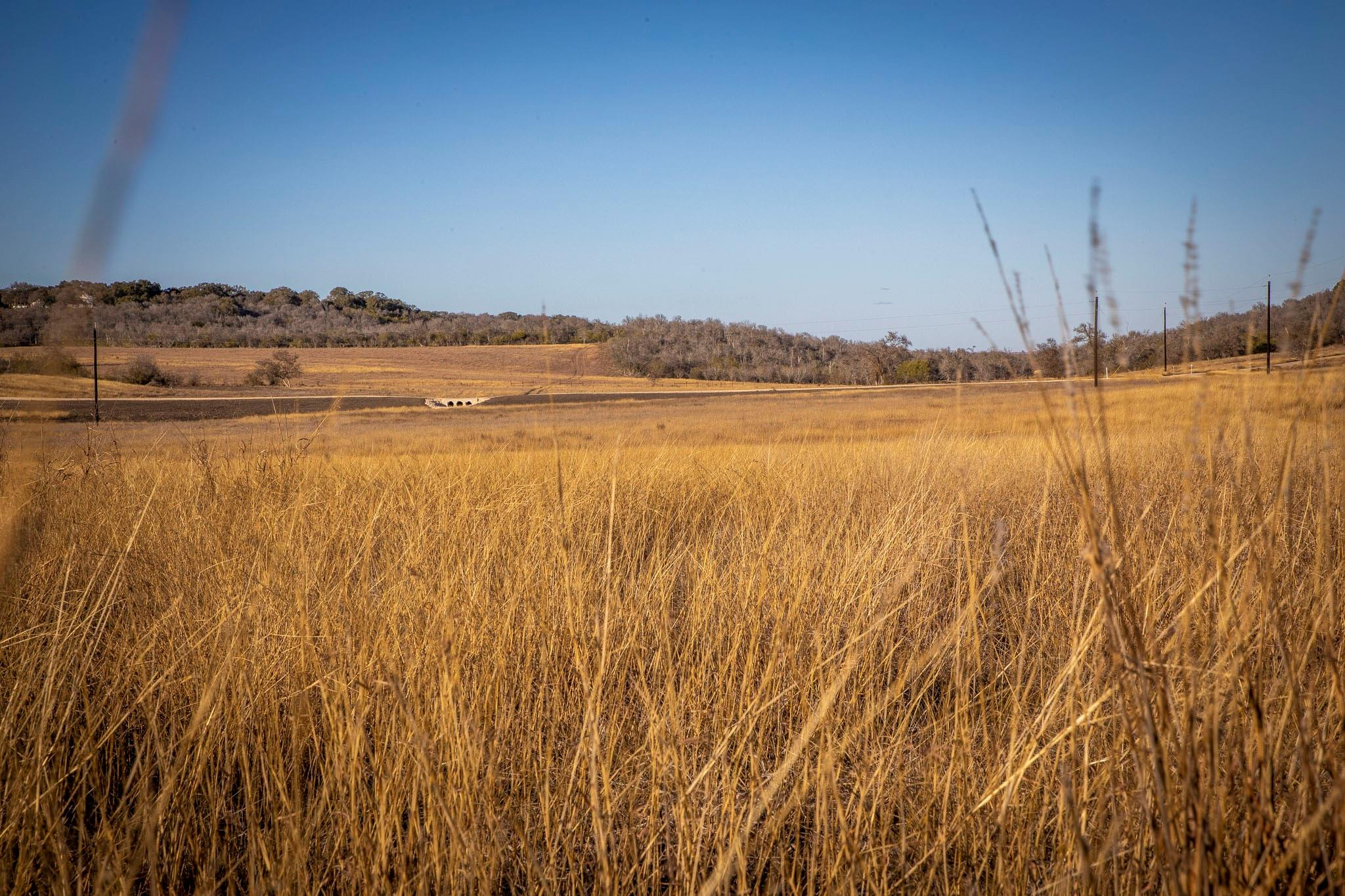 1233 Branch Road Property Photo - Seguin, TX real estate listing