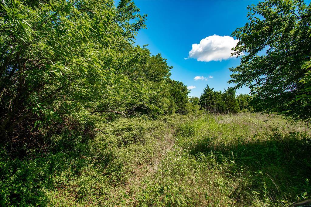 16730 Highway 290 Property Photo