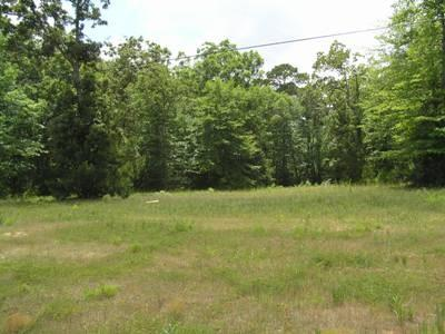 TBD FM 3126 and Hwy 190 W Property Photo - Livingston, TX real estate listing