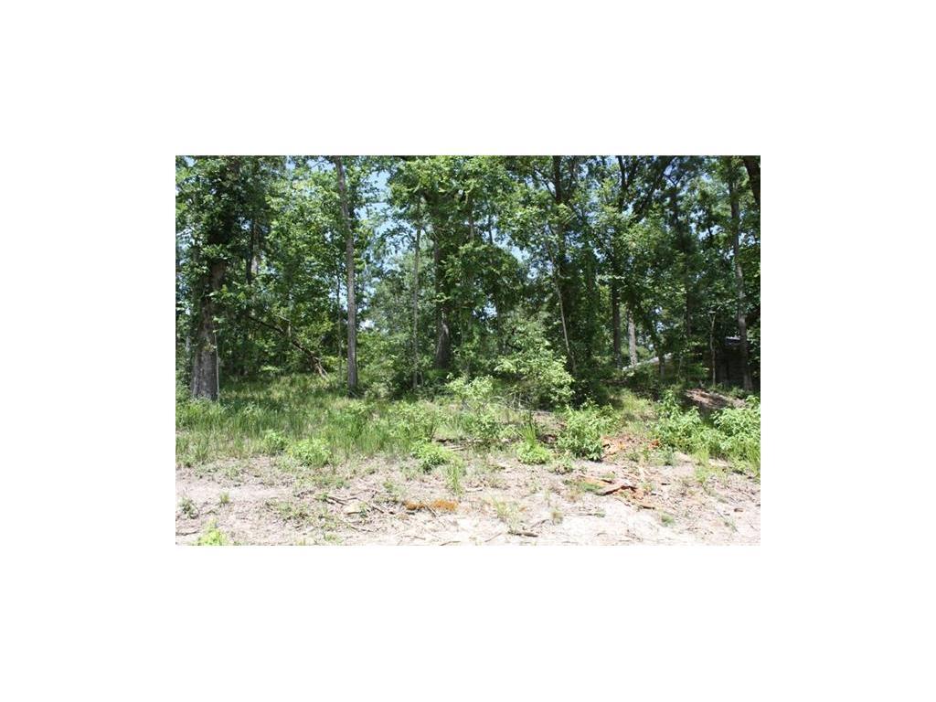 7 Pine Forest Acres Drive Property Photo - Sebastopol, TX real estate listing