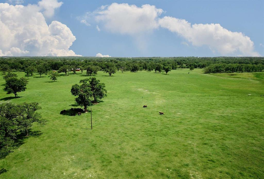 0017 CR 185 Property Photo - Anderson, TX real estate listing