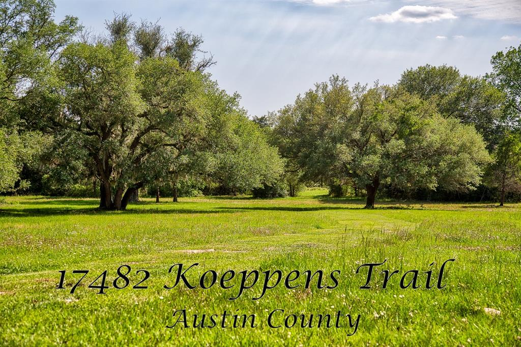 17482 Koeppens Trail, Cat Spring, TX 78933 - Cat Spring, TX real estate listing