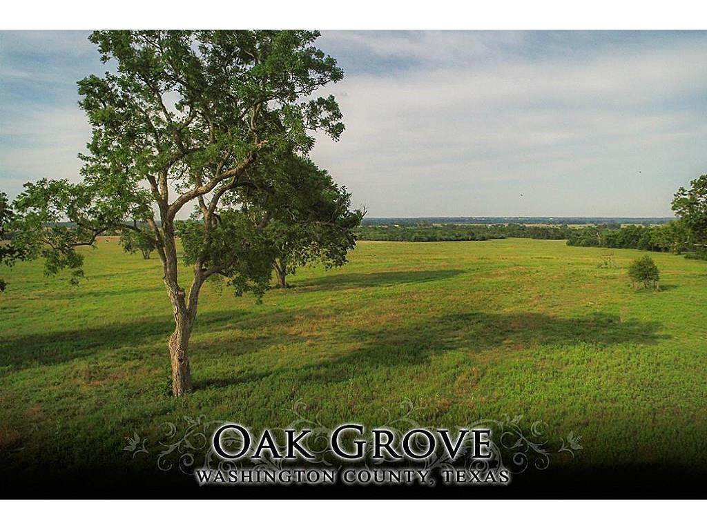 17 Flat Prairie Road, Washington, TX 77880 - Washington, TX real estate listing
