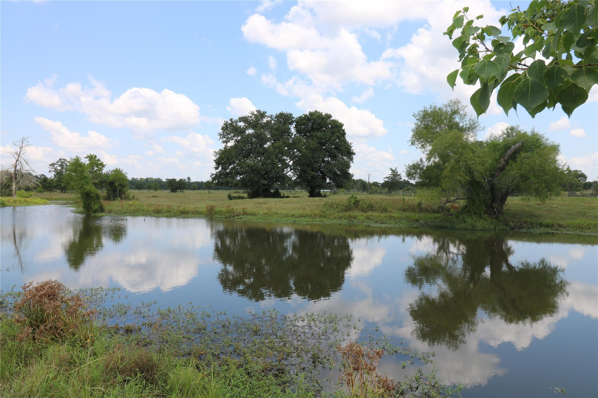 TBD Round Prairie Road Property Photo - Bedias, TX real estate listing