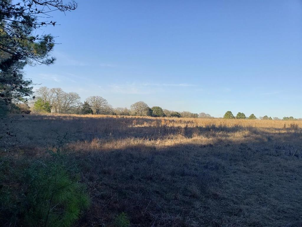 CR 3450 CR 3450, Lovelady, TX 75851 - Lovelady, TX real estate listing
