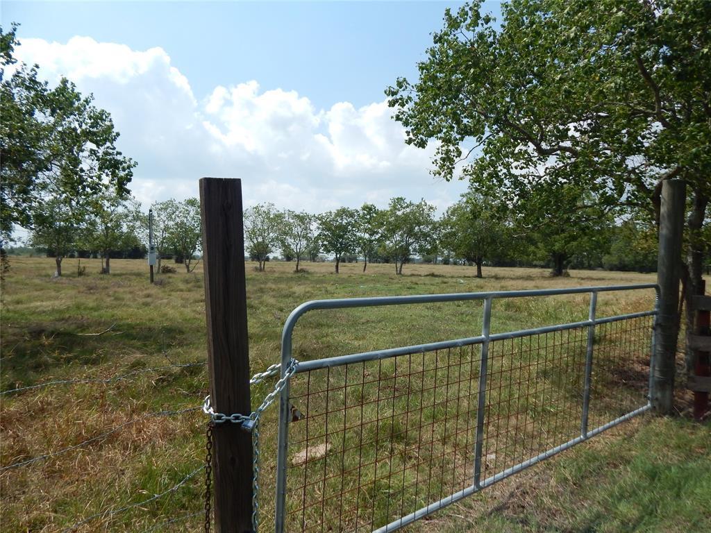 0 Hopkins Ln Lane, Damon, TX 77430 - Damon, TX real estate listing
