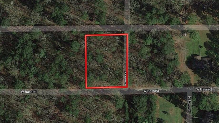 TBD Bassett Drive Property Photo - Lone Star, TX real estate listing