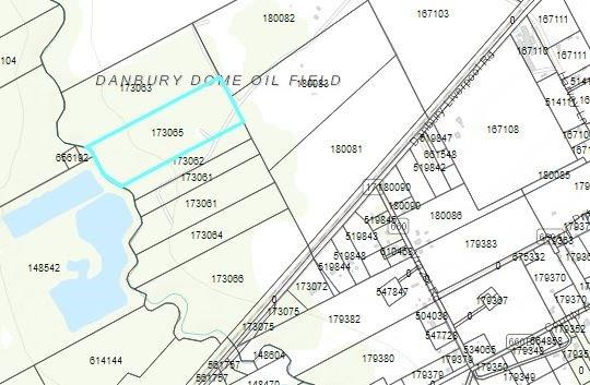 0 County Road 171 Off Property Photo - Danbury, TX real estate listing
