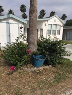 25 Rio Bravo Drive Property Photo - Brownsville, TX real estate listing