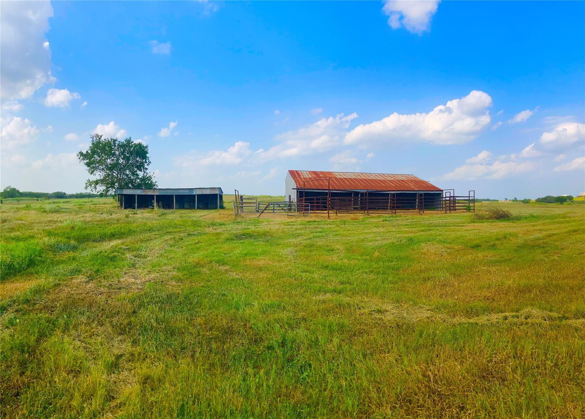 5661 Chadwick Hogan Road Property Photo - Chappell Hill, TX real estate listing