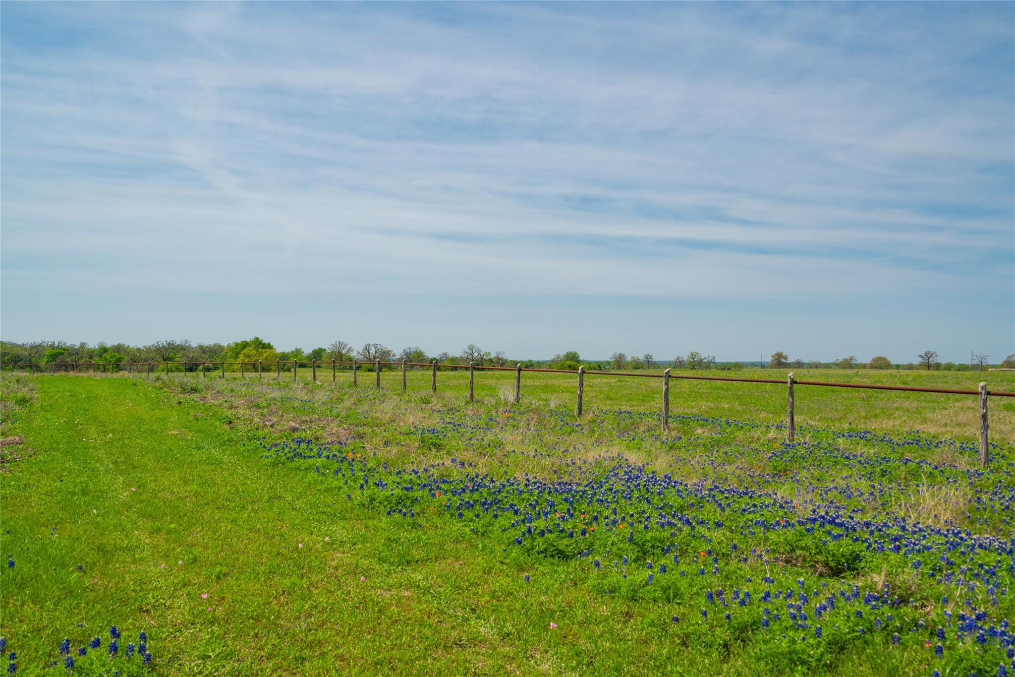 1001 High Prairie Road Property Photo - Millican, TX real estate listing