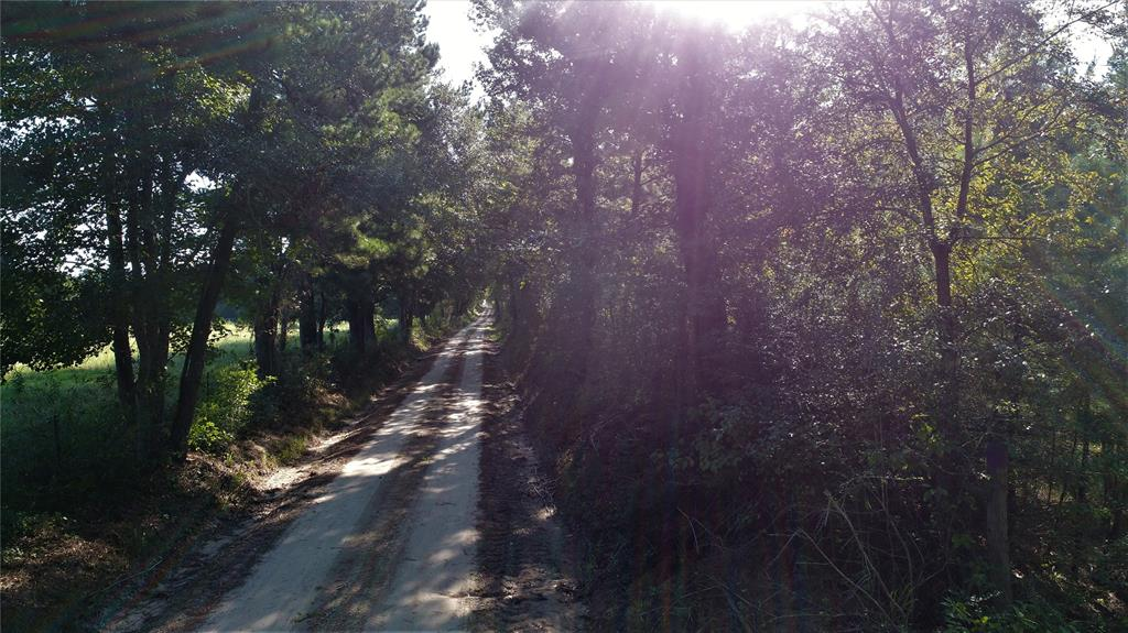 TBD CR 4160, Lovelady, TX 75851 - Lovelady, TX real estate listing