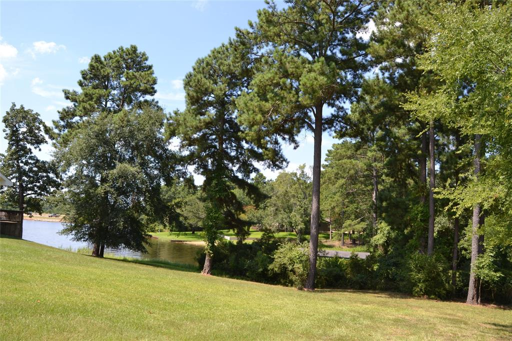 160 Lookout Point Drive, Grapeland, TX 75844 - Grapeland, TX real estate listing