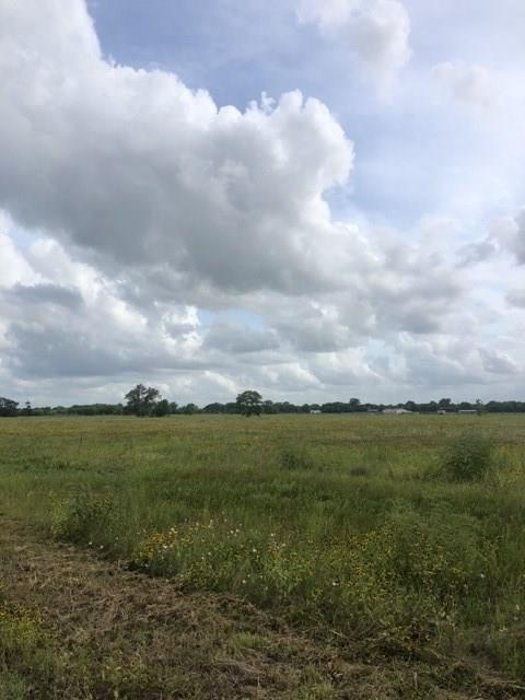 7017 County Road 100 Property Photo - Boling, TX real estate listing