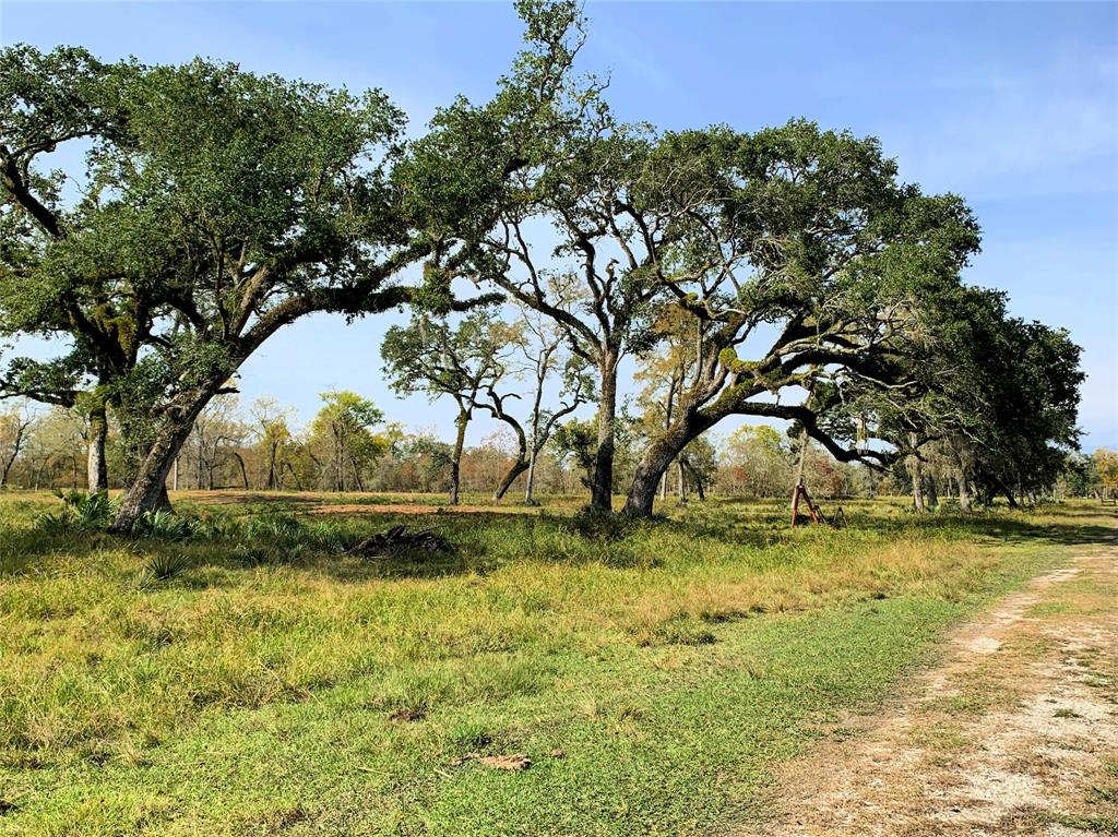 24388 County Road 332 - OFF Property Photo - Sweeny, TX real estate listing