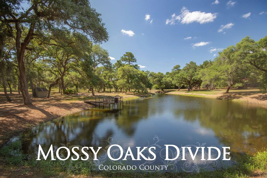 1069A Mossy Oaks Lane, New Ulm, TX 78950 - New Ulm, TX real estate listing