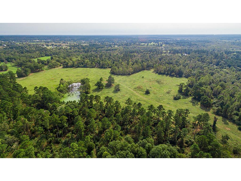 10983 FM 149, Montgomery, TX 77316 - Montgomery, TX real estate listing