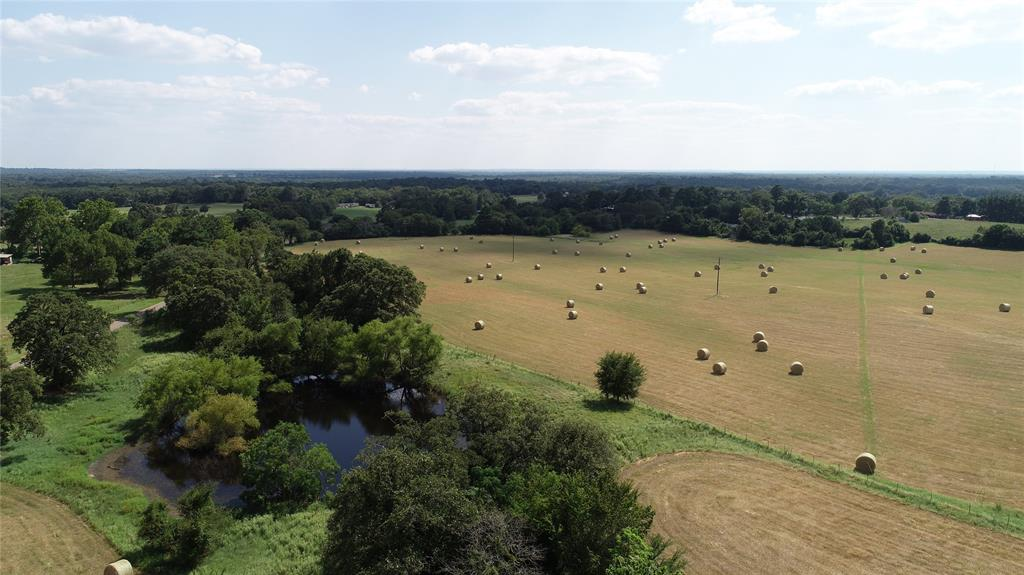TBD An County Road 422 Property Photo - Palestine, TX real estate listing